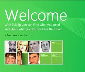 Соцсеть от Microsoft назовут Tulalip