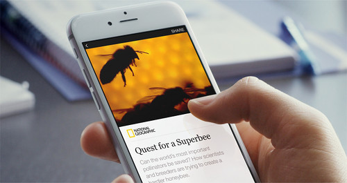 Facebook объявил о начале публикации статей и видеороликов ведущих изданий посредством новой функции «Мгновенные статьи»