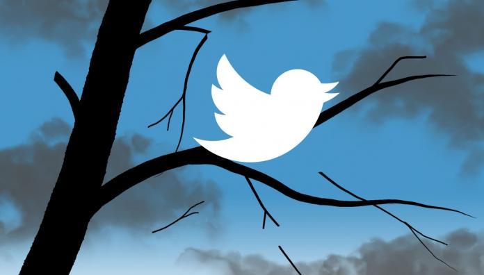 Акции Twitter упали на 14% из-за отсутствия роста аудитории