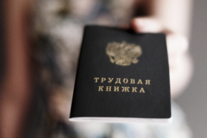 К 2020 году у россиян появятся электронные трудовые книжки