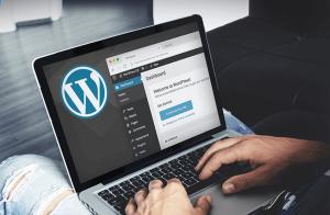 Разработка и создание сайтов на платформе WordPress
