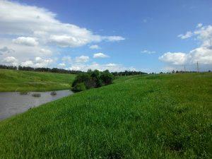 Покупка земельного участка без посредника