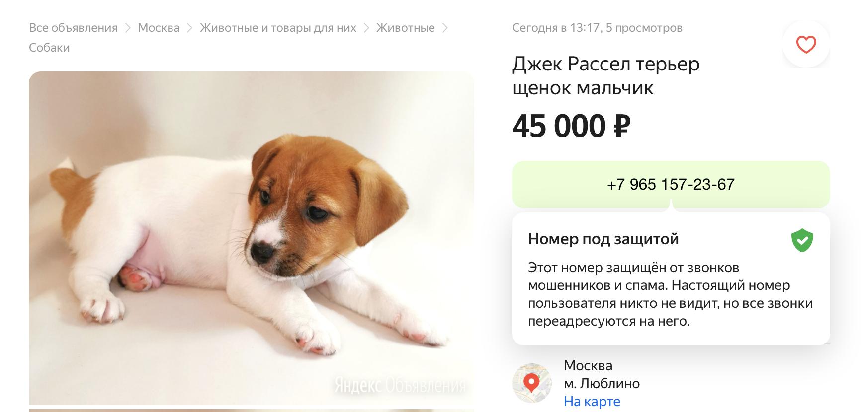 Сервис Яндекс.Объявления начал скрывать настоящие номера пользователей