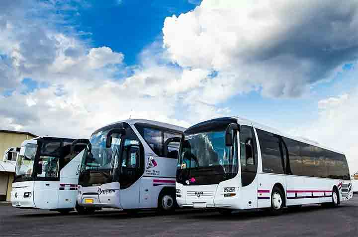 Как купить билет на автобус на gobus.online