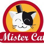 Самая лучшая кухня от сети ресторанов Mister Cat