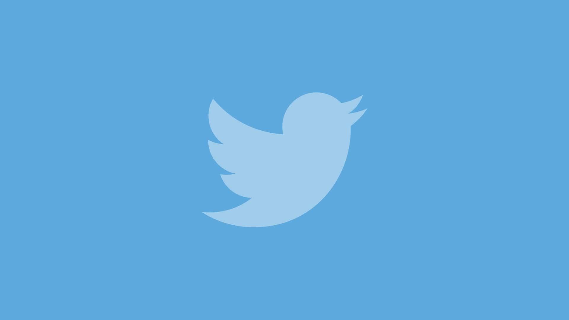 Twitter приостановил верификацию аккаунтов – спустя неделю после запуска
