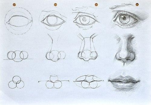 Инструкция по рисованию носа